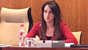 Aranzazu Martín durante su intervención en la Comisión de Educación