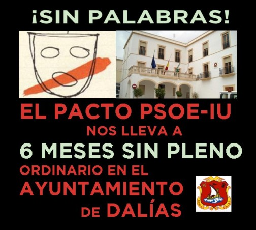 SIN PALABRAS_SIN PLENO_DALÍAS